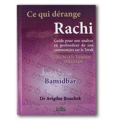 Ce qui dérange Rachi - Bamidbar - Dr Avigdor Bonchek
